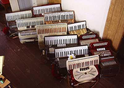 12 accordions